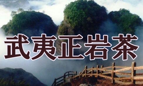 中国茶専門店-姫茶伝-麗しき単叢ページ-安心と美味しさは信頼の専門店で 私が年もかけて中国の山々を歩いて探し求めたお茶がここにあります。 武夷岩茶、肉桂、大紅抱、健康,美容茶